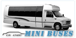 Mesa Mini Bus rental
